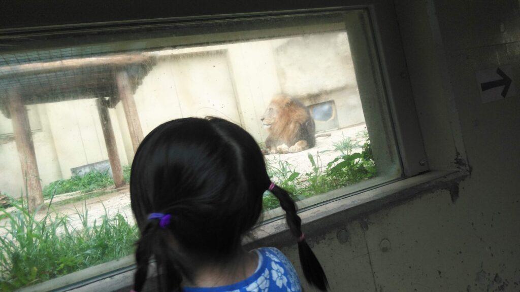 帰りに立ち寄って動物園(当選チケット利用)