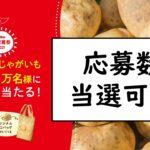 カルビー大収穫祭サムネ
